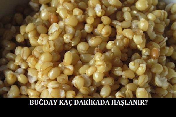 Buğday Kaç Dakikada Haşlanır