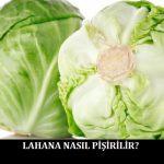 Lahana Nasıl Pişirilir