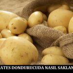 Patates Dondurucuda Nasıl Saklanır
