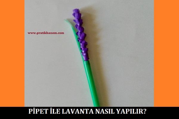 Pipet ile Lavanta Nasıl Yapılır