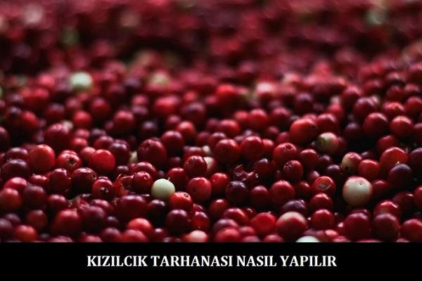 Kizilcik-Tarhanasi-Nasil-Yapilir