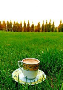 Türk Kahvesi Telvesinin Faydaları Nelerdir