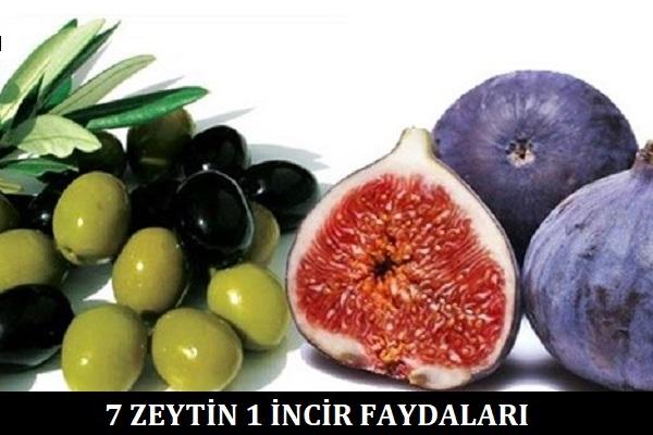 7-zeytin-1-incir-faydaları